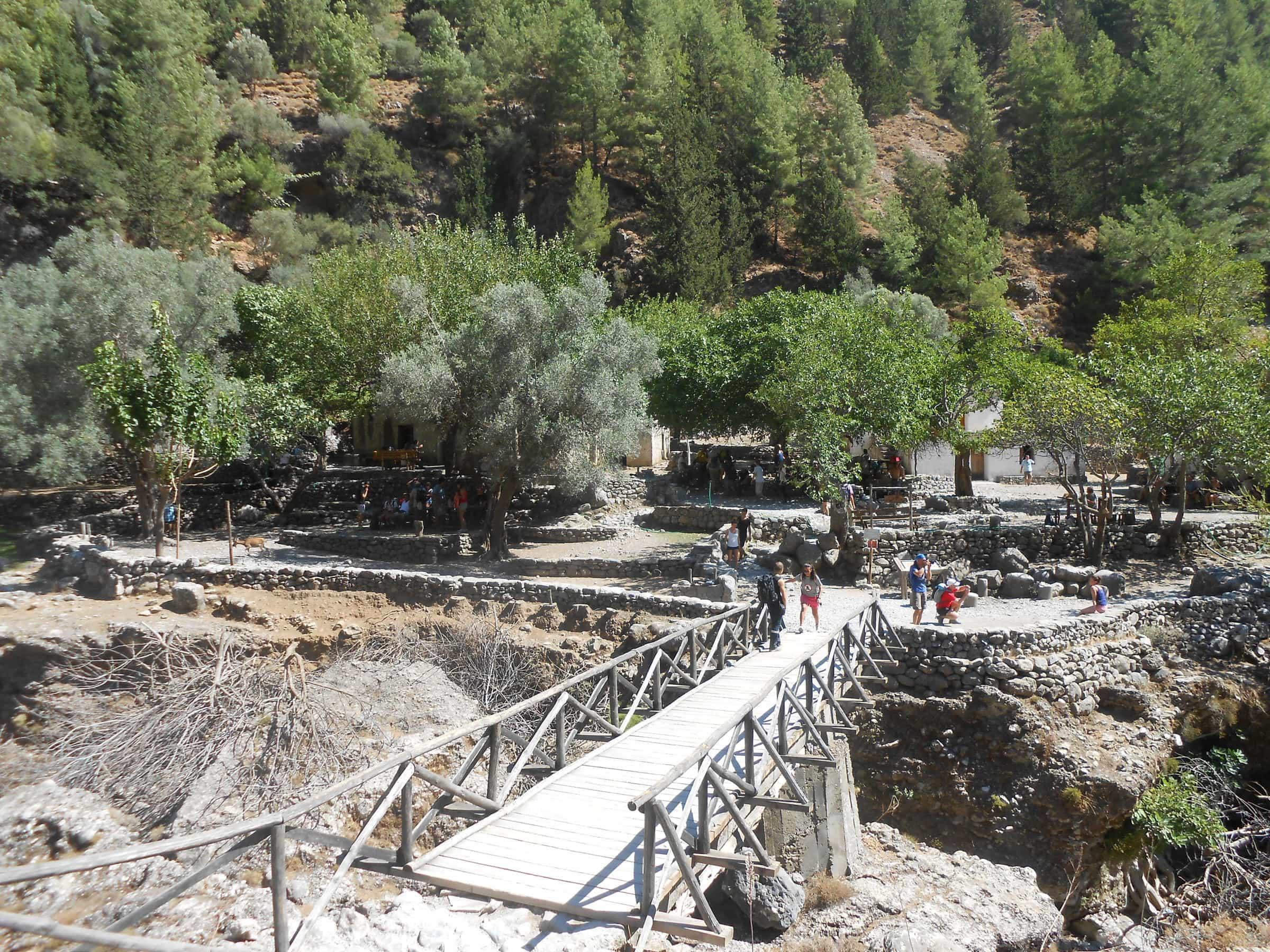 Island Of Crete Archivi Microcosmo Creta Goats Dont Lie Tea Tree 300 Ml Dscn3007