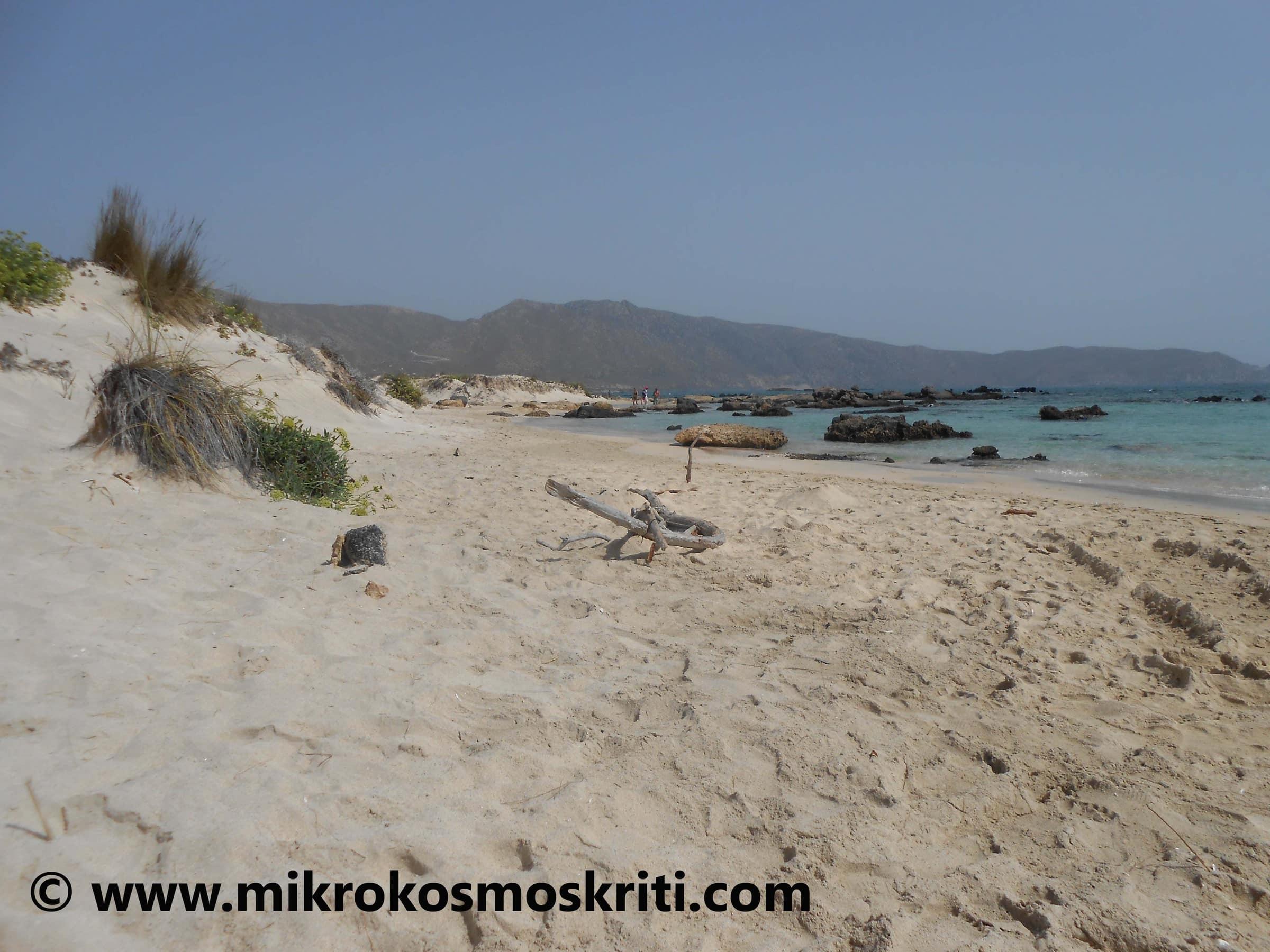 La paradisiaca spiaggia di Elafonissi