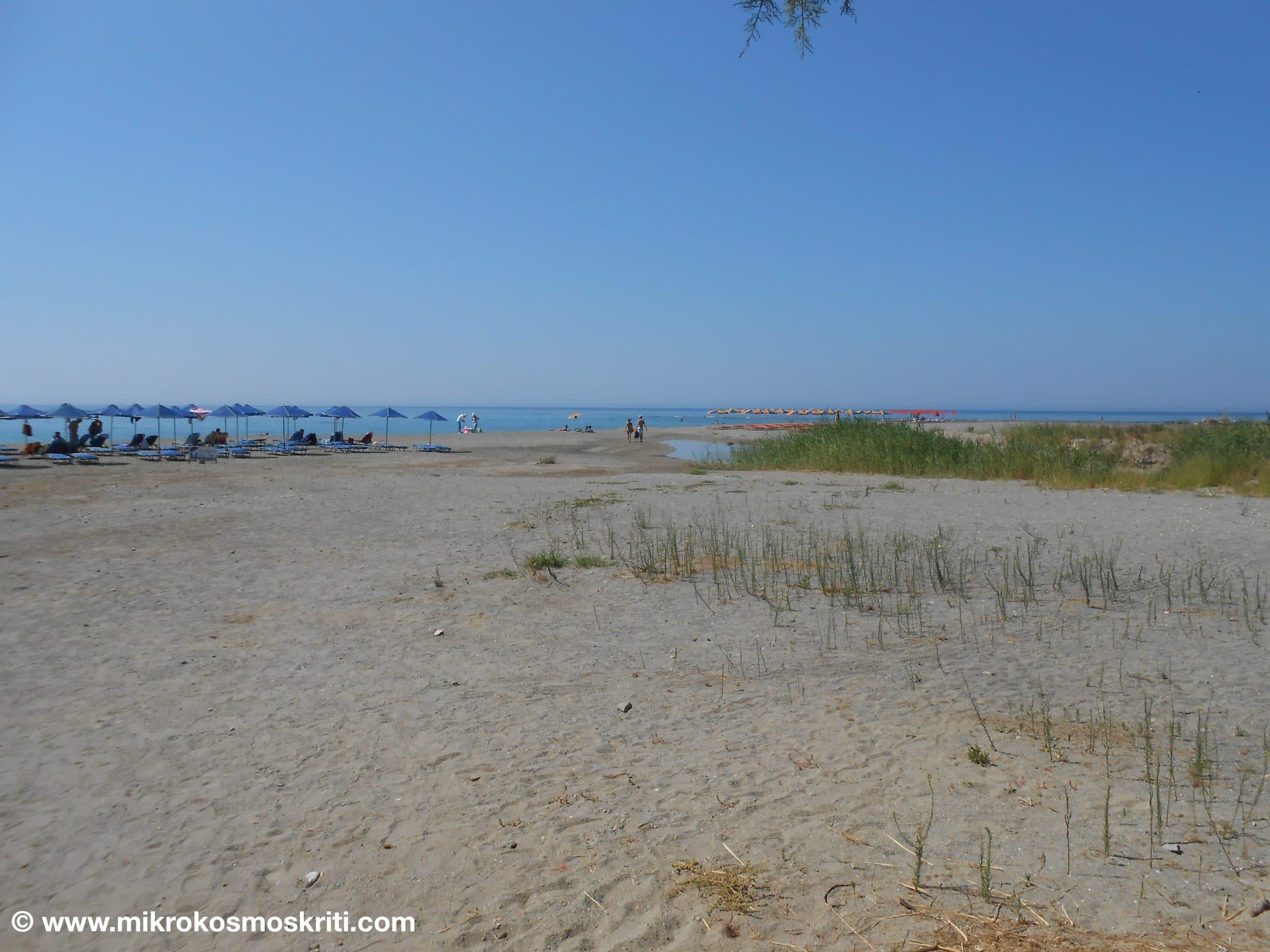 Spiaggia 2 rid