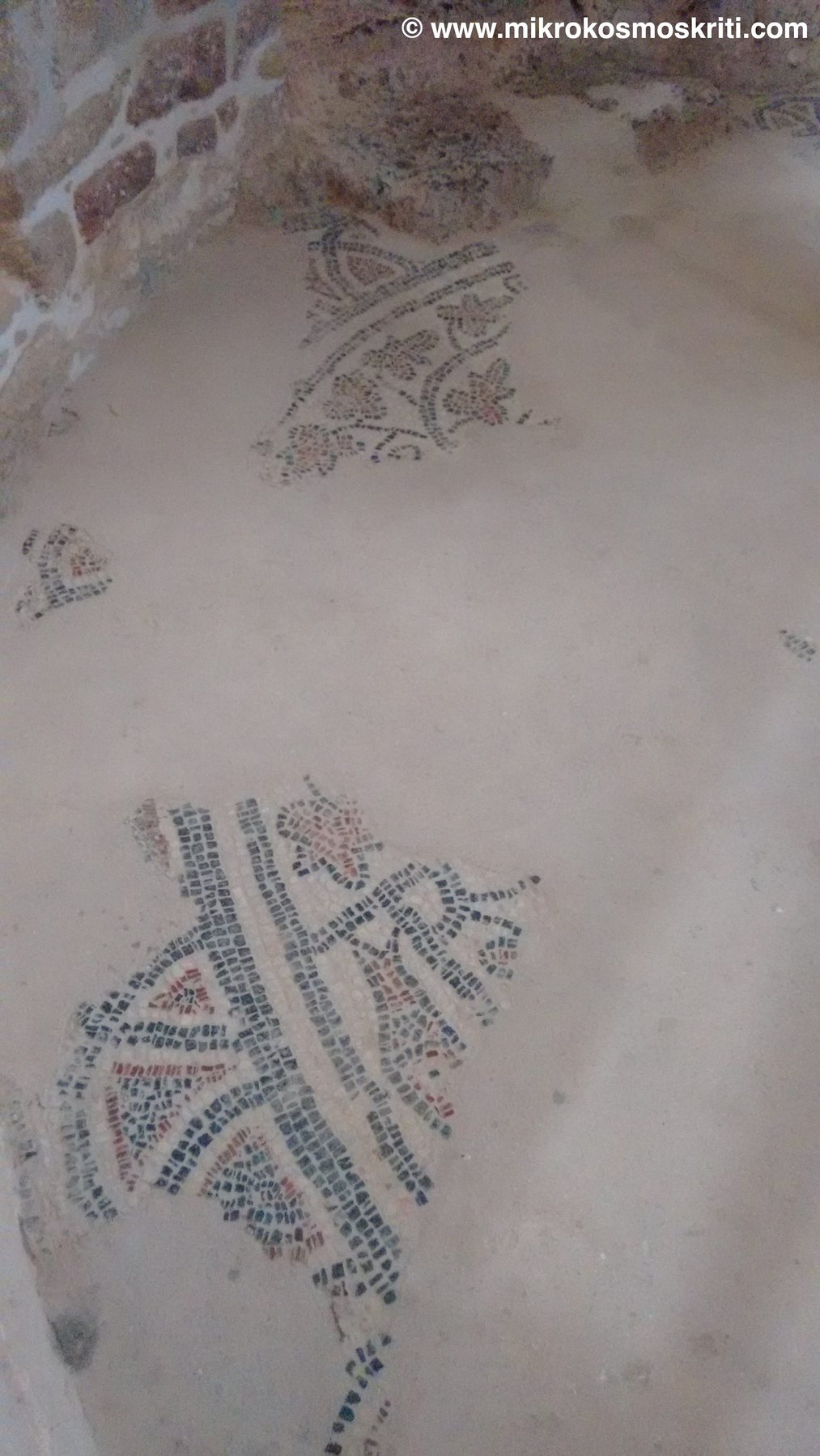 mosaici-rotonda